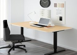 Sit Stand Table in Office Setup
